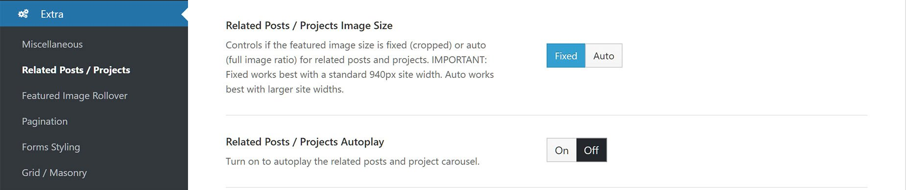 Portfolio Related Projects Theme Option